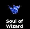 [Wizard's Soul Shard]