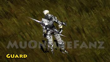 NPC [Guard]